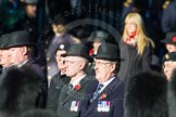 Remembrance Sunday Cenotaph March Past 2013: Trustees of the Royal British Legion leading the March Past.. Press stand opposite the Foreign Office building, Whitehall, London SW1, London, Greater London, United Kingdom, on 10 November 2013 at 11:38, image #15