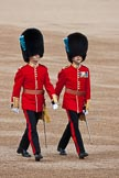Trooping the Colour 2009: Lieutnant (left) and Major (right) of the Irish Guards, further information appreciated!. Horse Guards Parade, Westminster, London SW1,  United Kingdom, on 13 June 2009 at 09:43, image #12