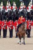 Trooping the Colour 2010: Lt Col C R V Walker, Grenadier Guards, Field Officer in Brigade Waiting and in command of the parade.. Horse Guards Parade, Westminster, London SW1, Greater London, United Kingdom, on 12 June 2010 at 11:29, image #132
