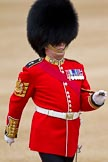 The Major General's Review 2011: Close-up of Garrison Sergeant Major, WO1 William Mott OBE, Welsh Guards.. Horse Guards Parade, Westminster, London SW1, Greater London, United Kingdom, on 28 May 2011 at 10:32, image #58