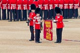 Trooping the Colour 2011: The Colour Case has been removed from the Colour, and the Colour Sergeant Chris Millin, has unrolled the flag, whilst the Duty Drummer is holding the colour case, and the sentry is presenting arms.. Horse Guards Parade, Westminster, London SW1, Greater London, United Kingdom, on 11 June 2011 at 10:33, image #55