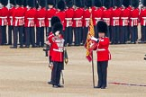 Trooping the Colour 2011: The Duty Drummer saluting the Colour, now that it is uncased and upright. Holding the flag is the Sergeant of the Ecort to the Colour, Colour Sergeant Chris Millin.. Horse Guards Parade, Westminster, London SW1, Greater London, United Kingdom, on 11 June 2011 at 10:33, image #56