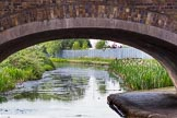 BCN Marathon Challenge 2013: Pothouse Bridge, carrying Loxdale Street over the Bradley Branch, near the terminus at Bradley Workshop.. Birmingham Canal Navigation,   United Kingdom, on 25 May 2013 at 16:33, image #244