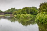 BCN Marathon Challenge 2014: Dudley No 2 Canal close to Windmill End Junction. On the right is the former basin of the Windmill End Colliery. Birmingham Canal Navigation,   United Kingdom, on 25 May 2014 at 06:35, image #198