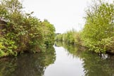 BCN 24h Marathon Challenge 2015: Icknield Port Loop looking green and remote, with the remains of the old industry out of view. Birmingham Canal Navigations,    on 23 May 2015 at 08:44, image #11