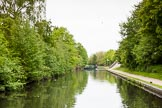 BCN 24h Marathon Challenge 2015: A BCN Marathon Challenge participant at Hockley Port Junction on the Soho Loop. Birmingham Canal Navigations,    on 23 May 2015 at 09:09, image #33