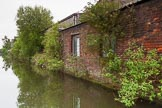 BCN 24h Marathon Challenge 2015: Trees growing out of the walls of an old factory on the BCN Engine Arm, but the building seems to be used.. Birmingham Canal Navigations,    on 23 May 2015 at 10:48, image #76