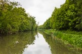 BCN 24h Marathon Challenge 2015: A quiet and peaceful stretch of the Walsall Canal. Many of the old branches and basins have almost completely disappeared.. Birmingham Canal Navigations,    on 23 May 2015 at 15:42, image #126