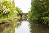 BCN 24h Marathon Challenge 2015: In Holly Bank Basin (Short Heath Branch) at the Wyrey & Essington Canal, looking towards the junction. It's a former colliery basin, initially serving the mines at New Invention, land later Holly Bank Colliery.. Birmingham Canal Navigations,    on 24 May 2015 at 07:07, image #149