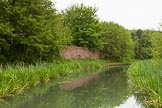 BCN 24h Marathon Challenge 2015: Overgrown remains of an industrial structure on the BCN Main Line neear Millfields Road. Birmingham Canal Navigations,    on 24 May 2015 at 08:57, image #178