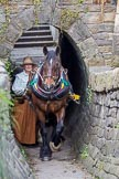 : Sue Day (Horseboating Society) with horse Bilbo walking through the horse tunnel of Marple lock 13..     on 03 July 2015 at 17:42, image #84