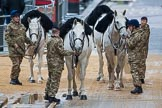 Lord Mayor's Show 2012: The four white Household Cavalry horses that had brought the State Trumpeters to the event.. Press stand opposite Mansion House, City of London, London, Greater London, United Kingdom, on 10 November 2012 at 10:07, image #24