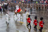 Lord Mayor's Show 2013: 6-Worshipful Company of Grocers- The Spice of Life, represented by the Coldstream Guards, G Company 7th Rifles,here they are joined by Cocoso the camel.. Press stand opposite Mansion House, City of London, London, Greater London, United Kingdom, on 09 November 2013 at 11:02, image #171
