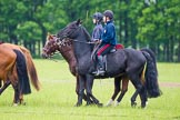 The Light Cavalry HAC Annual Review and Inspection 2013. Windsor Great Park Review Ground, Windsor, Berkshire, United Kingdom, on 09 June 2013 at 10:44, image #77