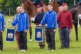The Light Cavalry HAC Annual Review and Inspection 2013. Windsor Great Park Review Ground, Windsor, Berkshire, United Kingdom, on 09 June 2013 at 10:54, image #108