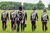 The Light Cavalry HAC Annual Review and Inspection 2013. Windsor Great Park Review Ground, Windsor, Berkshire, United Kingdom, on 09 June 2013 at 12:30, image #176