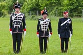 The Light Cavalry HAC Annual Review and Inspection 2013. Windsor Great Park Review Ground, Windsor, Berkshire, United Kingdom, on 09 June 2013 at 12:30, image #195
