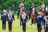 The Light Cavalry HAC Annual Review and Inspection 2013. Windsor Great Park Review Ground, Windsor, Berkshire, United Kingdom, on 09 June 2013 at 13:01, image #273