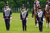 The Light Cavalry HAC Annual Review and Inspection 2013. Windsor Great Park Review Ground, Windsor, Berkshire, United Kingdom, on 09 June 2013 at 13:02, image #276