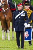 The Light Cavalry HAC Annual Review and Inspection 2013. Windsor Great Park Review Ground, Windsor, Berkshire, United Kingdom, on 09 June 2013 at 13:02, image #277