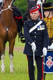 The Light Cavalry HAC Annual Review and Inspection 2013. Windsor Great Park Review Ground, Windsor, Berkshire, United Kingdom, on 09 June 2013 at 13:03, image #303
