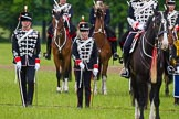 The Light Cavalry HAC Annual Review and Inspection 2013. Windsor Great Park Review Ground, Windsor, Berkshire, United Kingdom, on 09 June 2013 at 13:08, image #321