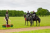 The Light Cavalry HAC Annual Review and Inspection 2013. Windsor Great Park Review Ground, Windsor, Berkshire, United Kingdom, on 09 June 2013 at 13:24, image #343