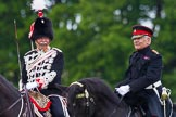 The Light Cavalry HAC Annual Review and Inspection 2013. Windsor Great Park Review Ground, Windsor, Berkshire, United Kingdom, on 09 June 2013 at 13:27, image #363