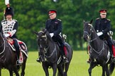 The Light Cavalry HAC Annual Review and Inspection 2013. Windsor Great Park Review Ground, Windsor, Berkshire, United Kingdom, on 09 June 2013 at 13:27, image #367