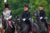 The Light Cavalry HAC Annual Review and Inspection 2013. Windsor Great Park Review Ground, Windsor, Berkshire, United Kingdom, on 09 June 2013 at 13:28, image #370