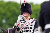 The Light Cavalry HAC Annual Review and Inspection 2013. Windsor Great Park Review Ground, Windsor, Berkshire, United Kingdom, on 09 June 2013 at 13:28, image #377