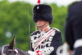 The Light Cavalry HAC Annual Review and Inspection 2013. Windsor Great Park Review Ground, Windsor, Berkshire, United Kingdom, on 09 June 2013 at 13:28, image #378