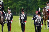 The Light Cavalry HAC Annual Review and Inspection 2013. Windsor Great Park Review Ground, Windsor, Berkshire, United Kingdom, on 09 June 2013 at 13:29, image #379