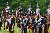 The Light Cavalry HAC Annual Review and Inspection 2013. Windsor Great Park Review Ground, Windsor, Berkshire, United Kingdom, on 09 June 2013 at 13:29, image #381