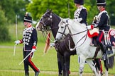 The Light Cavalry HAC Annual Review and Inspection 2013. Windsor Great Park Review Ground, Windsor, Berkshire, United Kingdom, on 09 June 2013 at 13:30, image #389