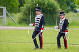The Light Cavalry HAC Annual Review and Inspection 2013. Windsor Great Park Review Ground, Windsor, Berkshire, United Kingdom, on 09 June 2013 at 13:30, image #391