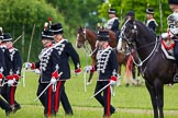 The Light Cavalry HAC Annual Review and Inspection 2013. Windsor Great Park Review Ground, Windsor, Berkshire, United Kingdom, on 09 June 2013 at 13:30, image #396