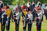The Light Cavalry HAC Annual Review and Inspection 2013. Windsor Great Park Review Ground, Windsor, Berkshire, United Kingdom, on 09 June 2013 at 13:31, image #399