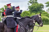 The Light Cavalry HAC Annual Review and Inspection 2013. Windsor Great Park Review Ground, Windsor, Berkshire, United Kingdom, on 09 June 2013 at 13:39, image #477