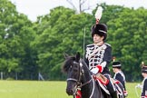 The Light Cavalry HAC Annual Review and Inspection 2013. Windsor Great Park Review Ground, Windsor, Berkshire, United Kingdom, on 09 June 2013 at 13:40, image #484