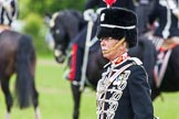 The Light Cavalry HAC Annual Review and Inspection 2013. Windsor Great Park Review Ground, Windsor, Berkshire, United Kingdom, on 09 June 2013 at 13:41, image #487
