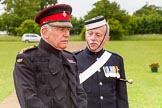 The Light Cavalry HAC Annual Review and Inspection 2013. Windsor Great Park Review Ground, Windsor, Berkshire, United Kingdom, on 09 June 2013 at 14:19, image #505