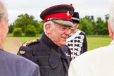 The Light Cavalry HAC Annual Review and Inspection 2013. Windsor Great Park Review Ground, Windsor, Berkshire, United Kingdom, on 09 June 2013 at 14:22, image #508