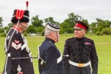 The Light Cavalry HAC Annual Review and Inspection 2013. Windsor Great Park Review Ground, Windsor, Berkshire, United Kingdom, on 09 June 2013 at 14:23, image #511