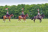 The Light Cavalry HAC Annual Review and Inspection 2013. Windsor Great Park Review Ground, Windsor, Berkshire, United Kingdom, on 09 June 2013 at 14:34, image #544