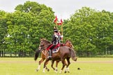 The Light Cavalry HAC Annual Review and Inspection 2013. Windsor Great Park Review Ground, Windsor, Berkshire, United Kingdom, on 09 June 2013 at 14:36, image #552