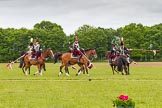 The Light Cavalry HAC Annual Review and Inspection 2013. Windsor Great Park Review Ground, Windsor, Berkshire, United Kingdom, on 09 June 2013 at 14:37, image #558