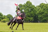 The Light Cavalry HAC Annual Review and Inspection 2013. Windsor Great Park Review Ground, Windsor, Berkshire, United Kingdom, on 09 June 2013 at 14:38, image #562