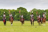 The Light Cavalry HAC Annual Review and Inspection 2013. Windsor Great Park Review Ground, Windsor, Berkshire, United Kingdom, on 09 June 2013 at 14:39, image #569