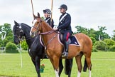 The Light Cavalry HAC Annual Review and Inspection 2013. Windsor Great Park Review Ground, Windsor, Berkshire, United Kingdom, on 09 June 2013 at 14:53, image #591